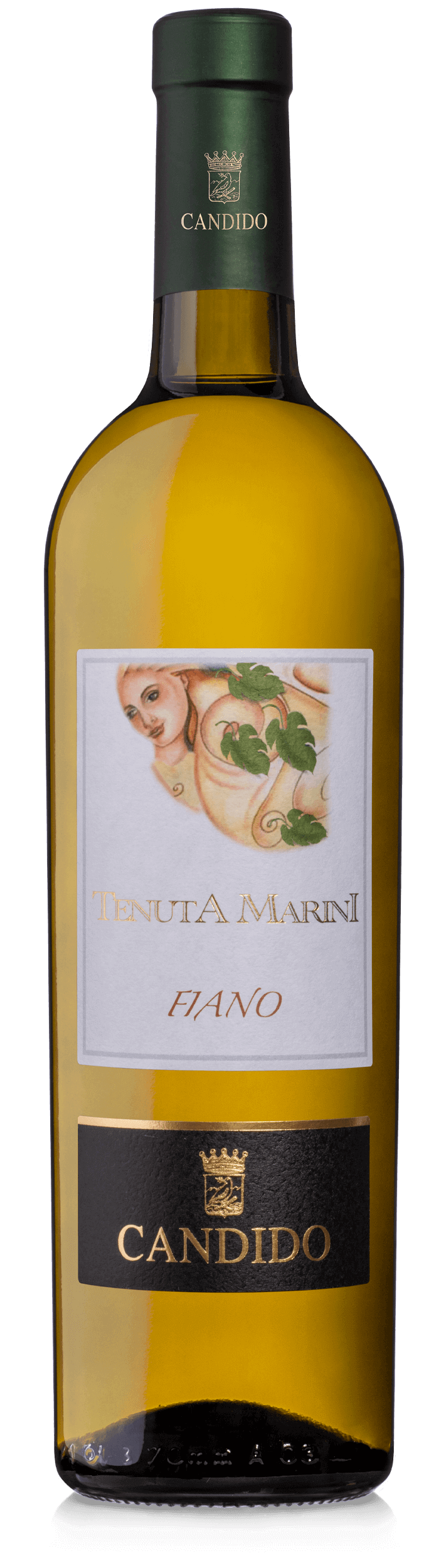 vini bianchi di Puglia Tenuta Marini Candido