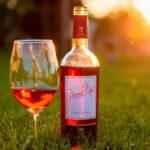 Vini rosati salentini Piccoli Passi Candido