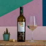 Vini bianchi Salento Candido Tenuta Marini